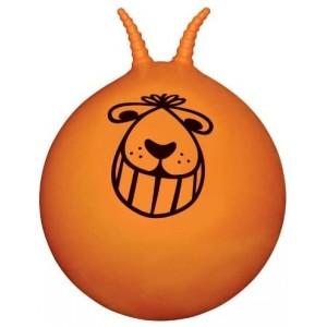 Grand Ballon sauteur, pour enfant énergique de plus de 5 ans!