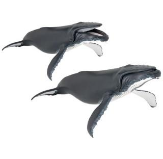 Baleine à bosse Papo